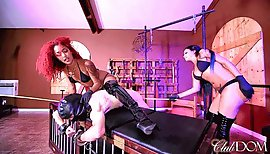 Daisy Raven Cane you Raw